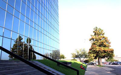 South University-The Art Institute of Dallas